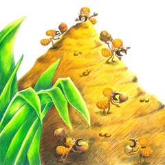 termite friend