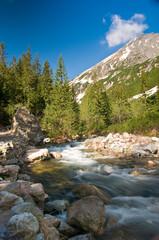Fototapete - Roztoka river in polish tatra mountains