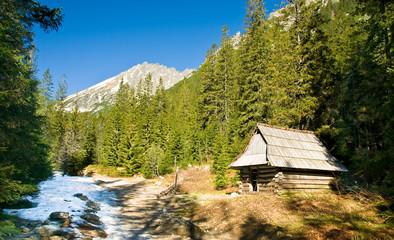 Fototapete - Small cottage in polish Tatra mountains in Roztoka valley