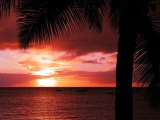 Sunset - 5