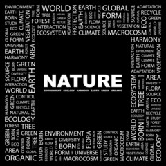 NATURE. Square frame with association terms.