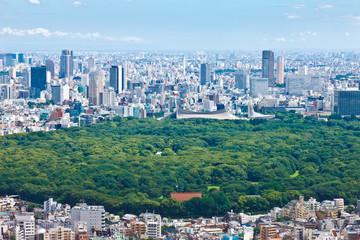 明治神宮と代々木体育館と渋谷周辺への眺望