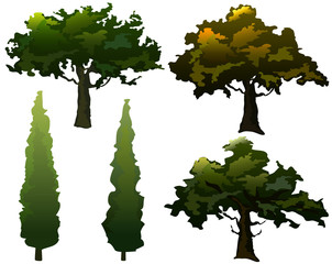 Trees. Olive and Cypress. Vector