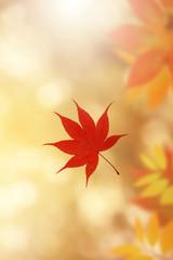 秋色イメージ
