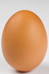 ein braunes ei stehend auf weissem hintergrund