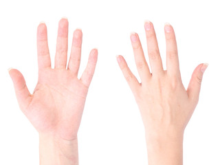 front and back of the hand