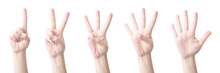 Figures testimony fingers