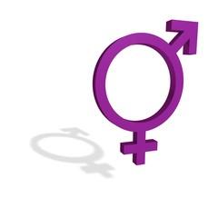 symbole androgine