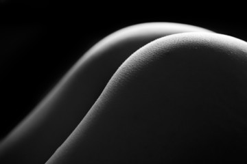 Female bottom