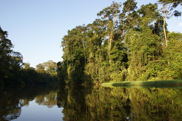 rivières de tortuguero