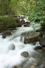 Garden Poster Forest river chute d'eau