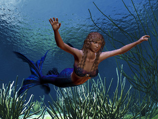 Photo sur Plexiglas Mermaid MERMAID