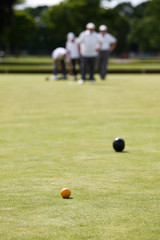 Lawn Bowls - Wood heading towards Jack