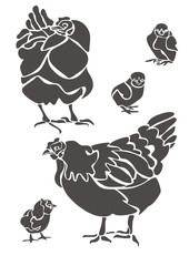 Куры и цыплята / Hens and Chickens