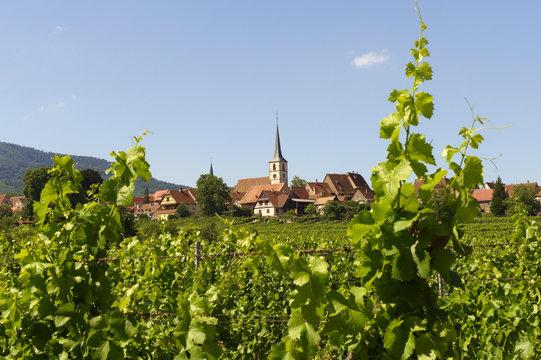 village de mittelbergheim en alsace