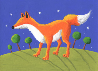 Fox in the night