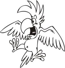 Parrot.Funny Birds.