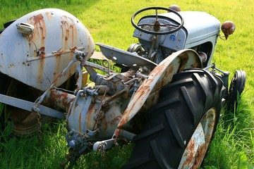 Oldtimer Traktor auf einer Wiese