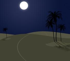 deserto notte