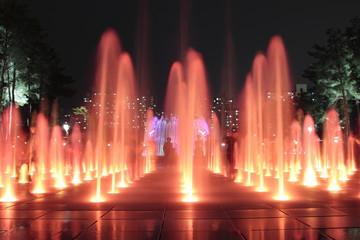 Beautiful  fountains at night