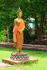 Standing Buddha on Lotus image