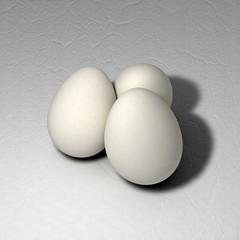 3d egg's