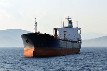 A massive cargo ship floating on a calm sea