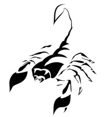 Silhouette of  scorpion