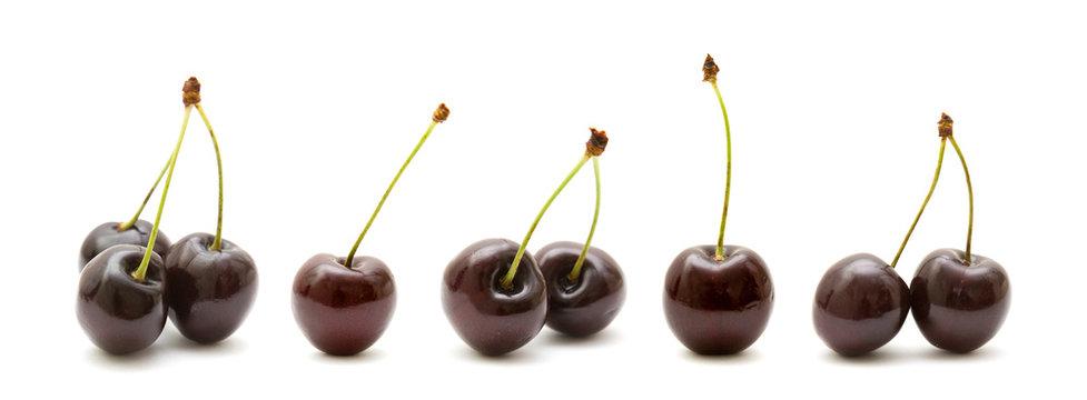 dark cherries border