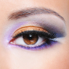 Female eye with fashion saturated make-up