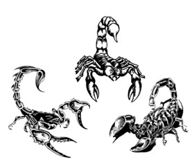 tattoo of the scorpions 3