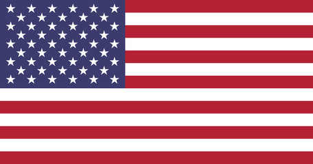Wall Mural - United States of America Flag