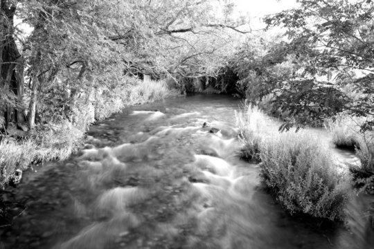 Long-exposure rushing creek