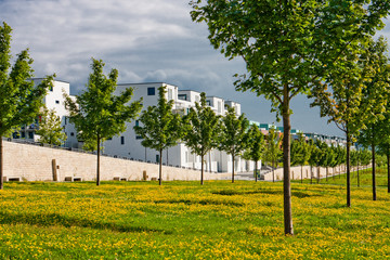 Ruhezone in der Stadt Grünanlage
