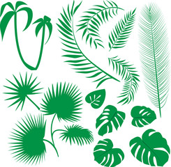 vector set green leaves