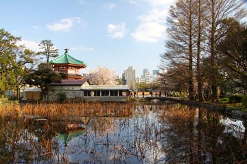 temple devant un lac japonais