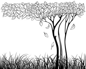 Silhouette of tree with grass