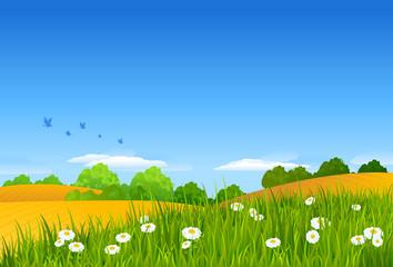 Sommerliche Landschaft (mit Clippfad)