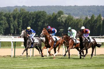 courses chevaux deauville