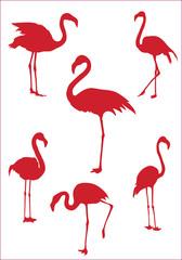 Фламинго 6 / Flamingo 6