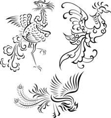 bird symbol design