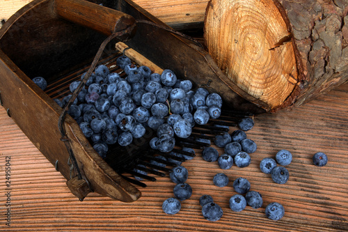blueberry picking machine