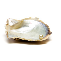 Oyster n Pearl
