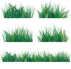various green grass