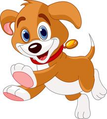 Running funny puppy