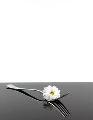 Gabel mit Blüte