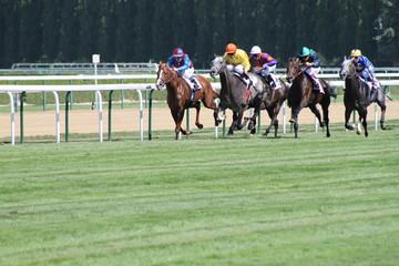 courses chevaux à deauville