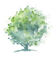 Acquerello di albero