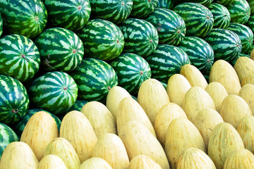 Group of fresh ripe watermelons and sweet melons