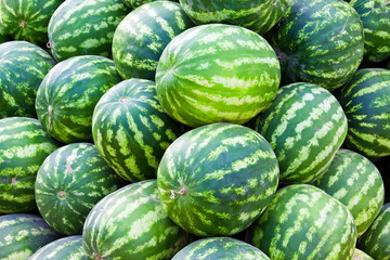 Group of fresh ripe watermelons